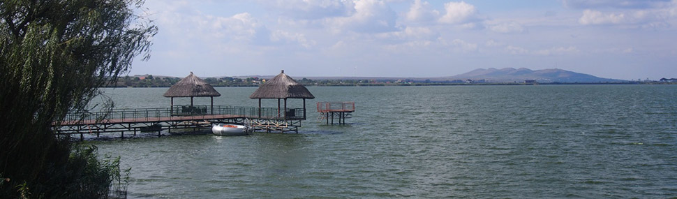 Marvelous view over the Danube Delta