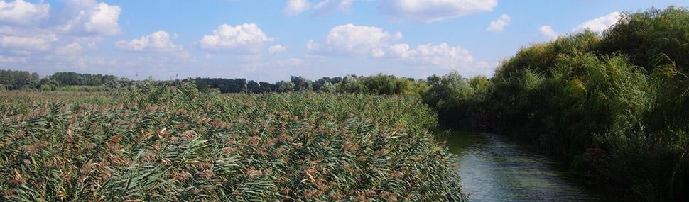 The Danube Delta, UNESCO World Heritage Site
